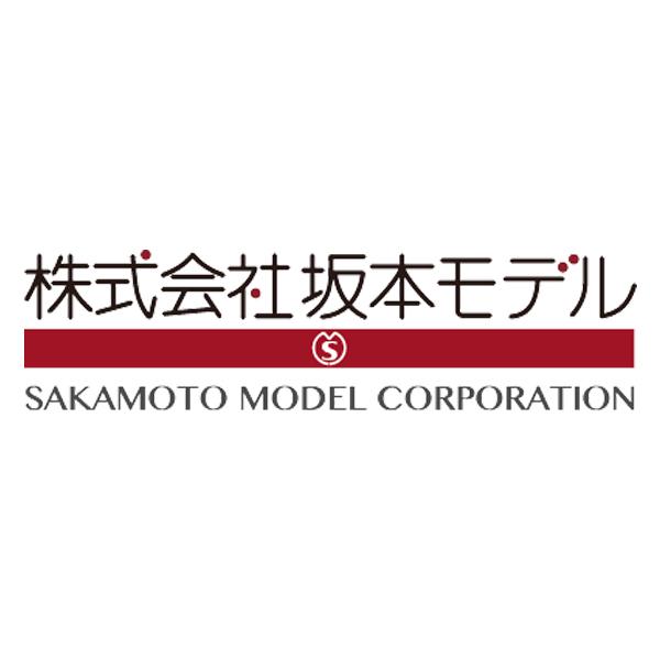 Sakamoto Model